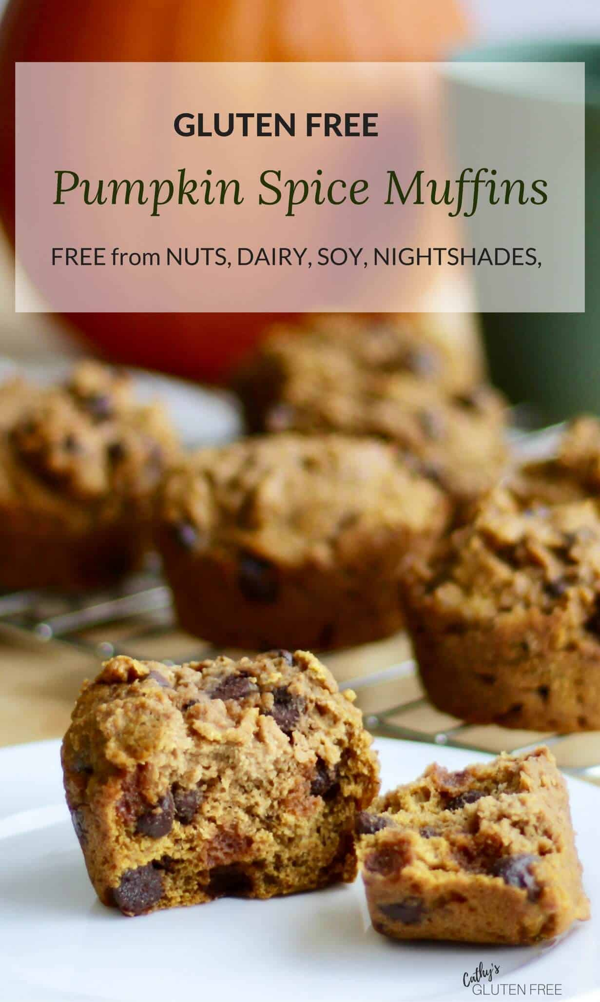 Gluten Free Pumpkin Spice Muffins | Free from nuts, soy, corn, nightshades CathysGlutenFree.com #healthy #easy #gluten free #homemade #with chocolate chips