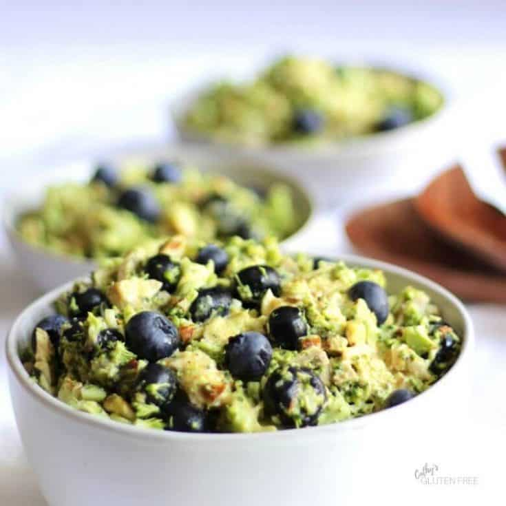 Broccoli Slaw with Chicken, Blueberries, and Almonds is one of the healthy recipes that I've been making for my family for years! It's a low carb salad that gets veggies into lunches. Learn how to make the dressing, toast almonds, and use the whole broccoli. #dressing #veggies #healthy
