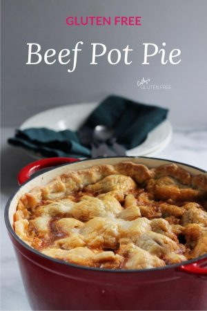 pie crust topped beef pot pie in red pot