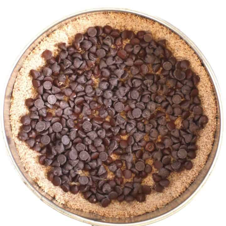 a layer of chocolate chips spread over the crumb crust in bottom of pan