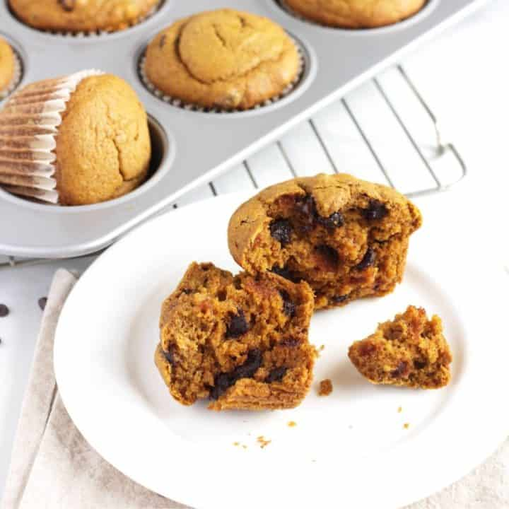 pumpkin muffin with chocolate chips broken open on white plate