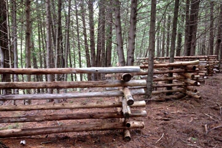 completed rail fence in the woods