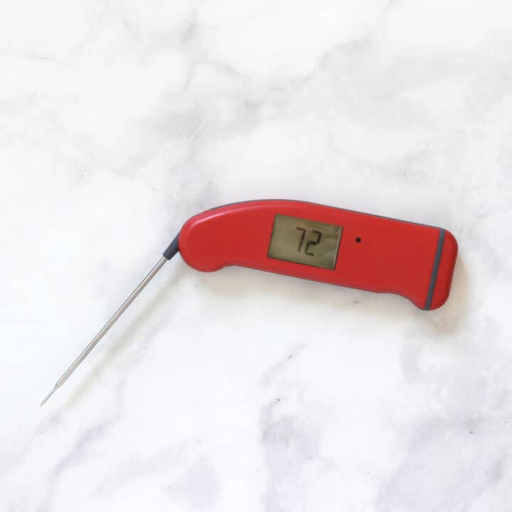 red Thermapen