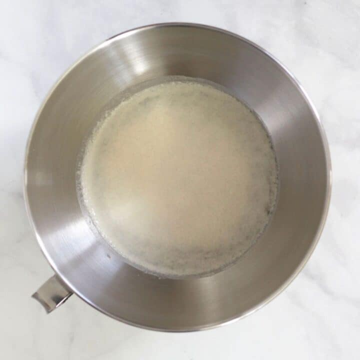 yeast sprinkled over water in bowl of stand mixer